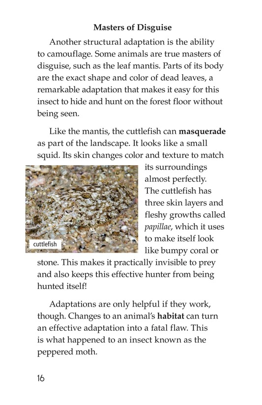 Book Preview For Amazing Animal Adaptations Page 16