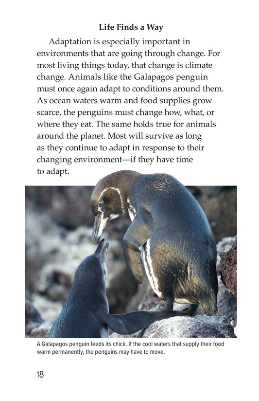 Book Preview For Amazing Animal Adaptations Page 18