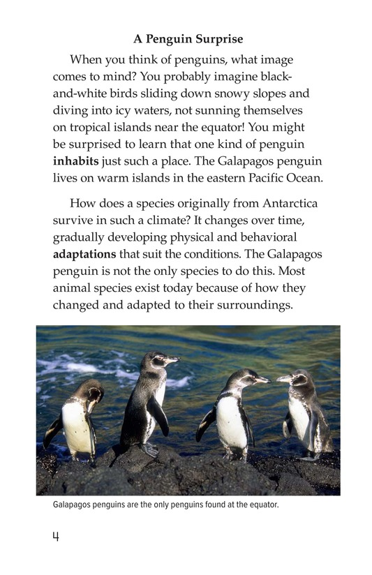 Book Preview For Amazing Animal Adaptations Page 4