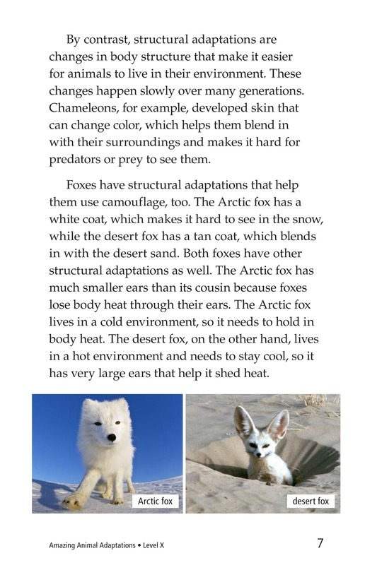 Book Preview For Amazing Animal Adaptations Page 7