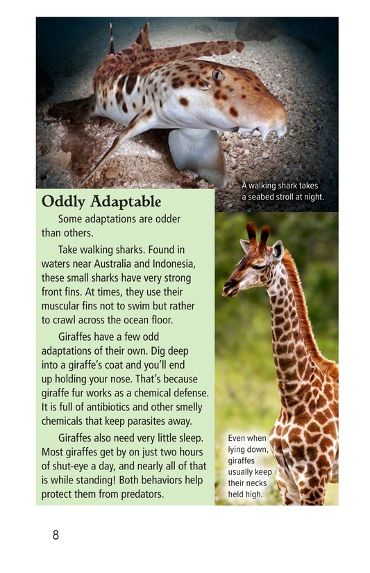 Book Preview For Amazing Animal Adaptations Page 8
