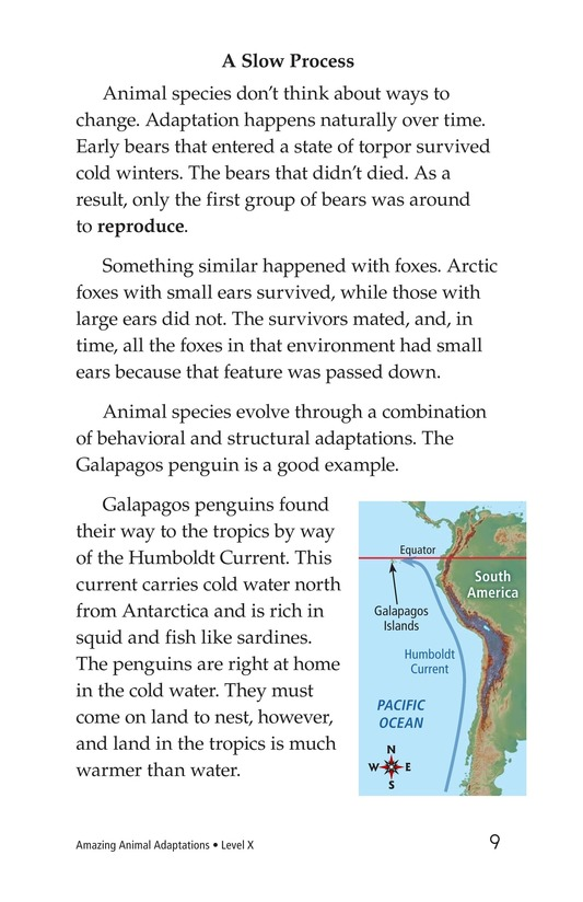 Book Preview For Amazing Animal Adaptations Page 9