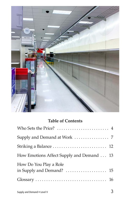 Book Preview For Supply and Demand Page 3