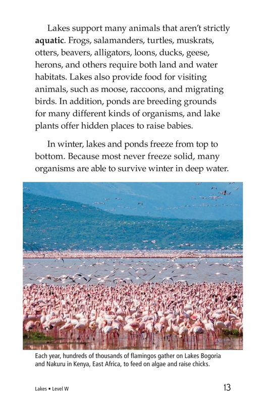 Book Preview For Lakes Page 13