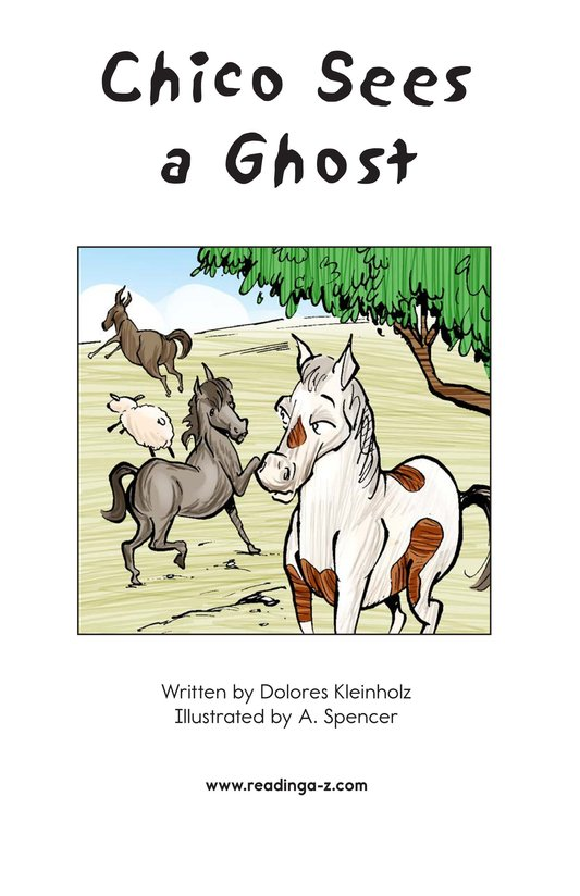 Book Preview For Chico Sees a Ghost Page 2