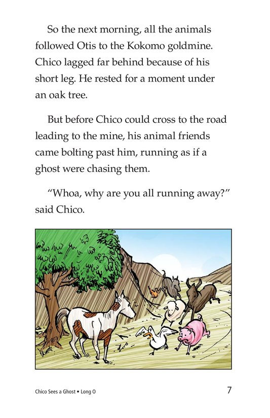 Book Preview For Chico Sees a Ghost Page 7