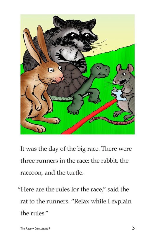 Book Preview For The Race Page 3