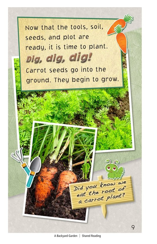 Book Preview For A Backyard Garden - Read 2 Page 9