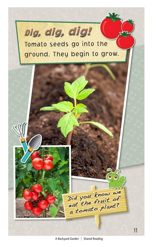 Book Preview For A Backyard Garden - Read 3 Page 11