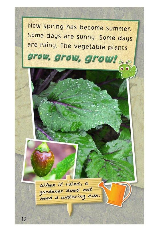 Book Preview For A Backyard Garden - Read 3 Page 12