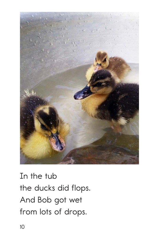 Book Preview For Bob and the Ducks Page 10