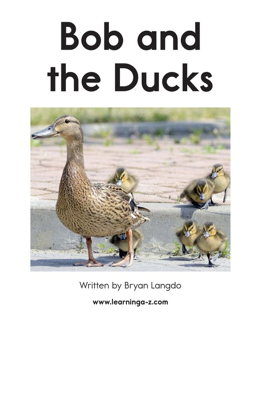 Book Preview For Bob and the Ducks Page 2