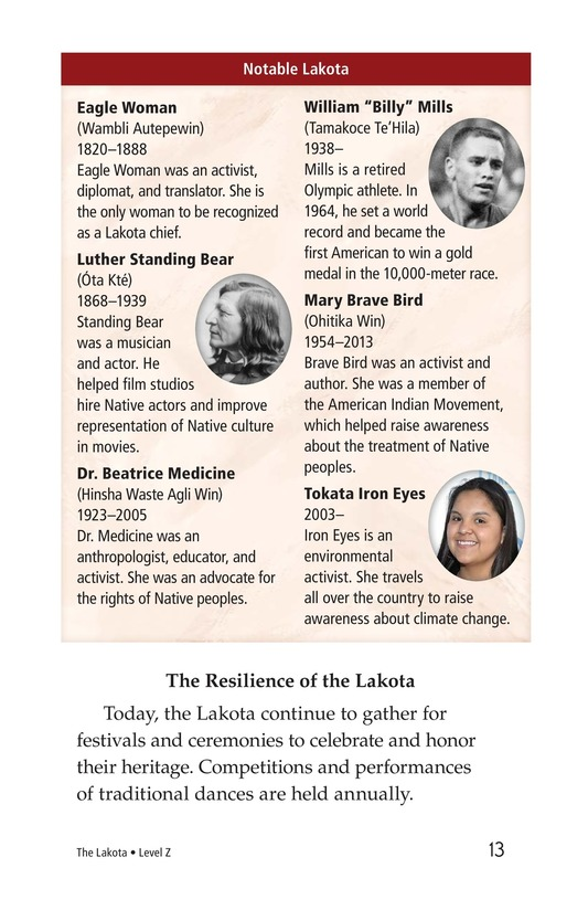 Book Preview For The Lakota Page 13