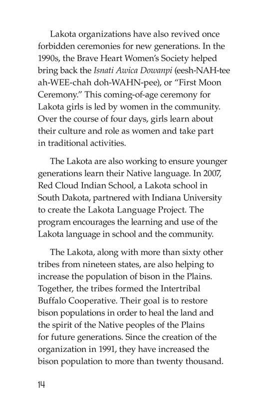 Book Preview For The Lakota Page 14