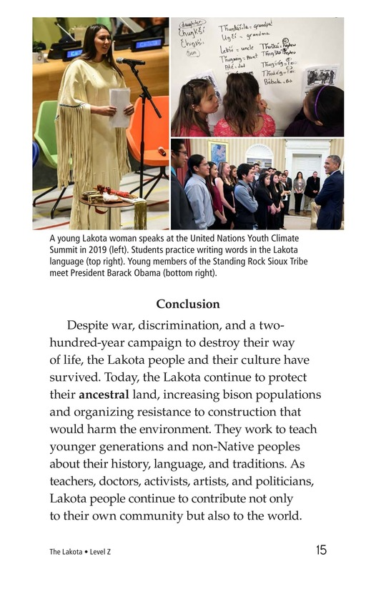 Book Preview For The Lakota Page 15
