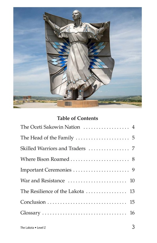 Book Preview For The Lakota Page 3