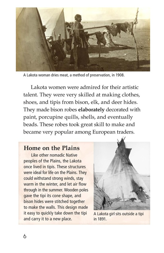 Book Preview For The Lakota Page 6