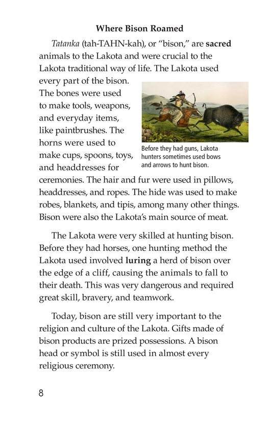 Book Preview For The Lakota Page 8