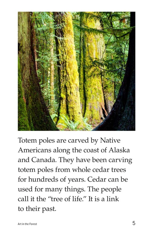 Book Preview For Art in the Forest Page 5