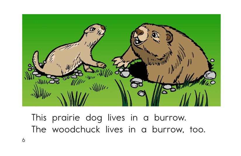 Book Preview For Where Animals Live Page 6