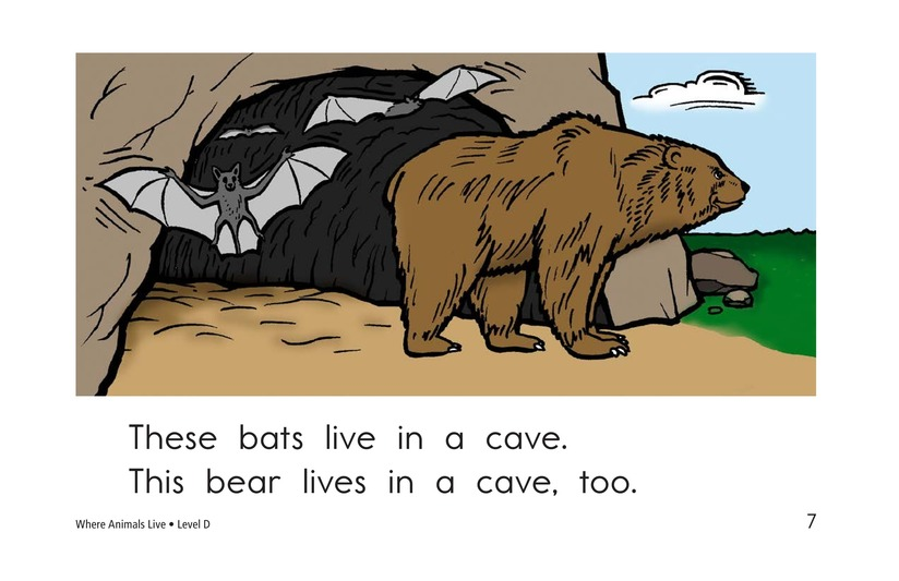 Book Preview For Where Animals Live Page 7