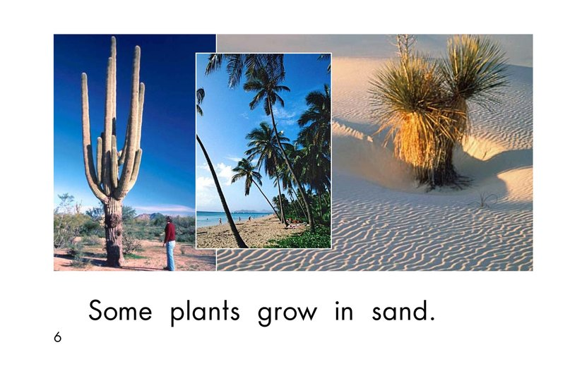 Book Preview For Where Plants Grow Page 6