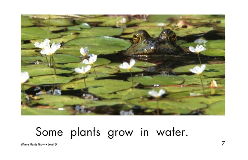 Book Preview For Where Plants Grow Page 7