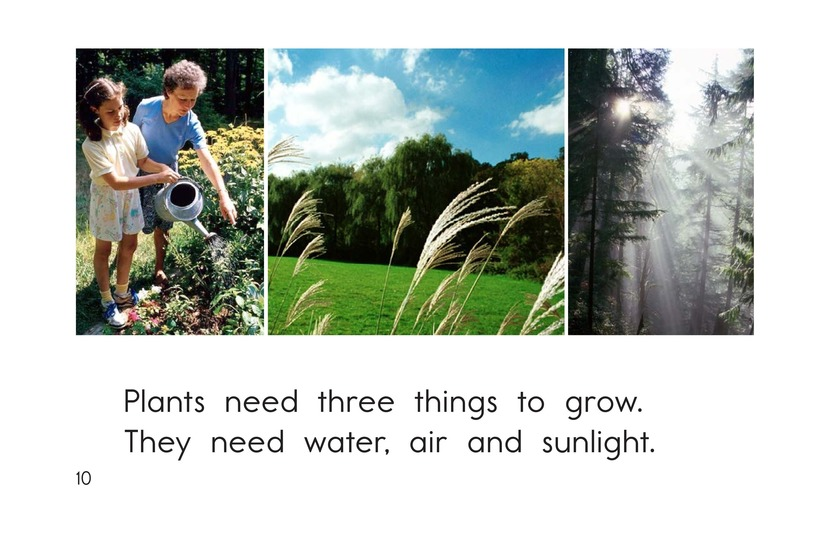 Book Preview For Where Plants Grow Page 10