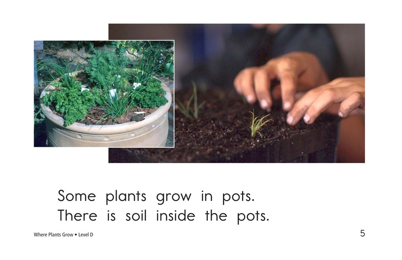 Book Preview For Where Plants Grow Page 5
