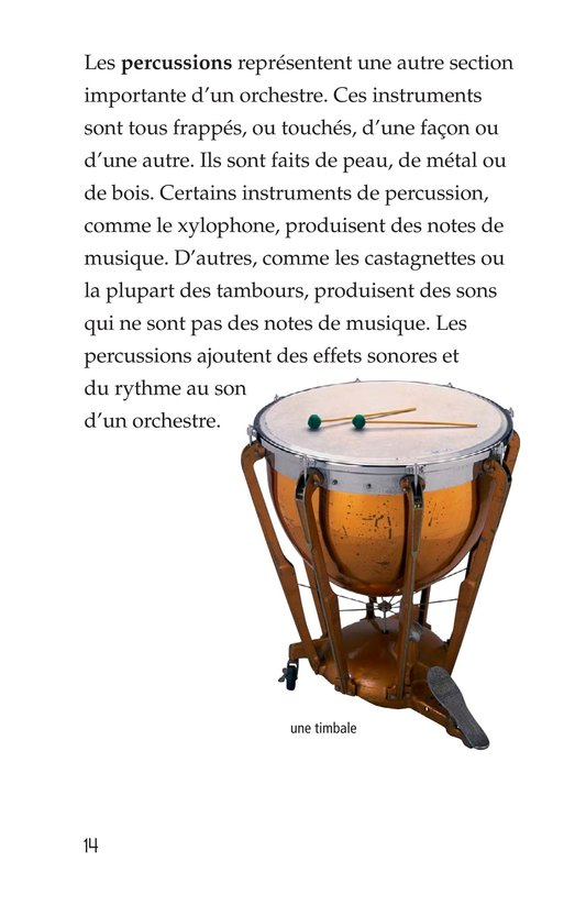 Book Preview For Musical Instruments Page 14