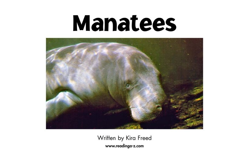 Book Preview For Manatees Page 2