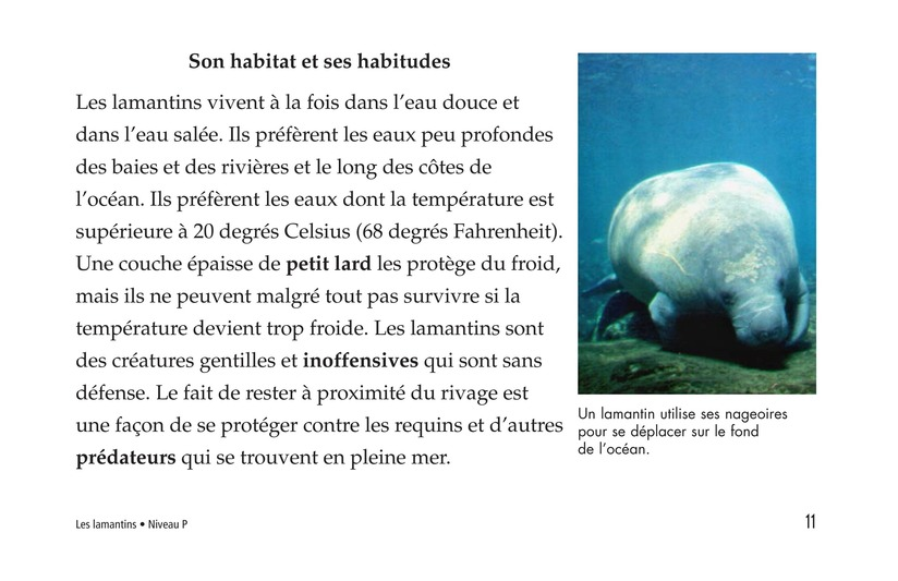Book Preview For Manatees Page 11