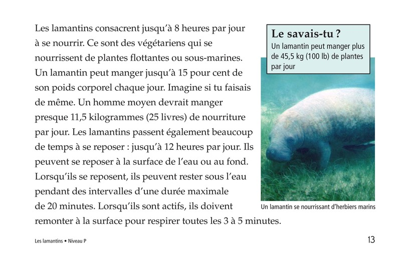 Book Preview For Manatees Page 13