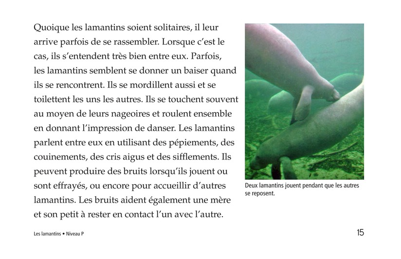 Book Preview For Manatees Page 15