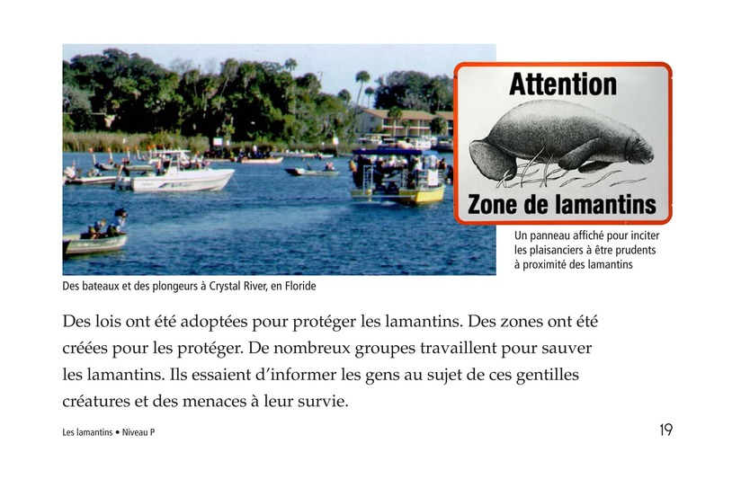 Book Preview For Manatees Page 19