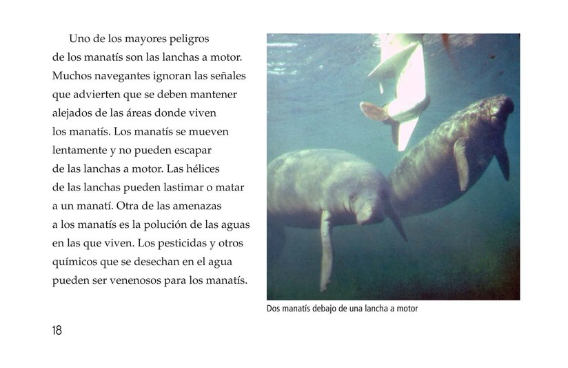 Book Preview For Manatees Page 18