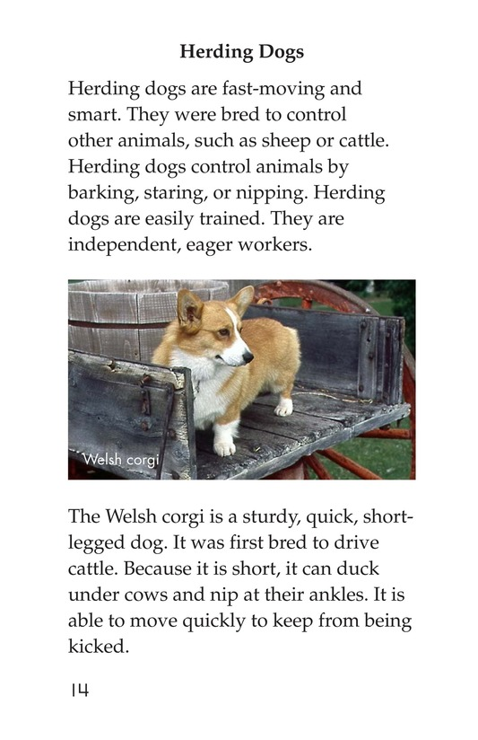 Book Preview For Breeds of Dogs Page 14