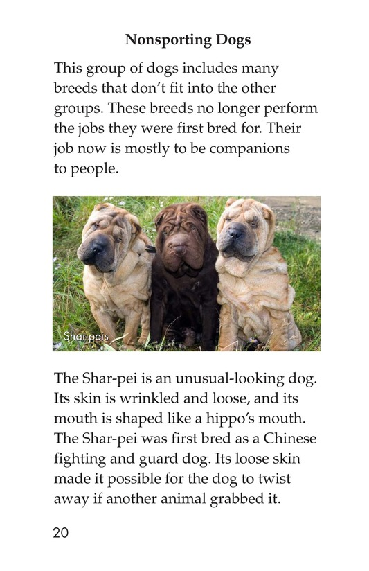 Book Preview For Breeds of Dogs Page 20