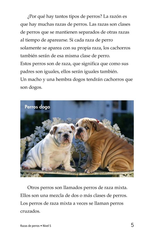 Book Preview For Breeds of Dogs Page 5