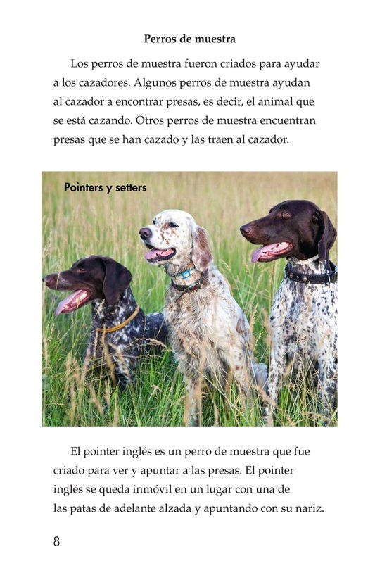Book Preview For Breeds of Dogs Page 8