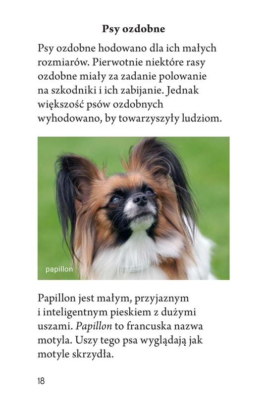 Book Preview For Breeds of Dogs Page 18