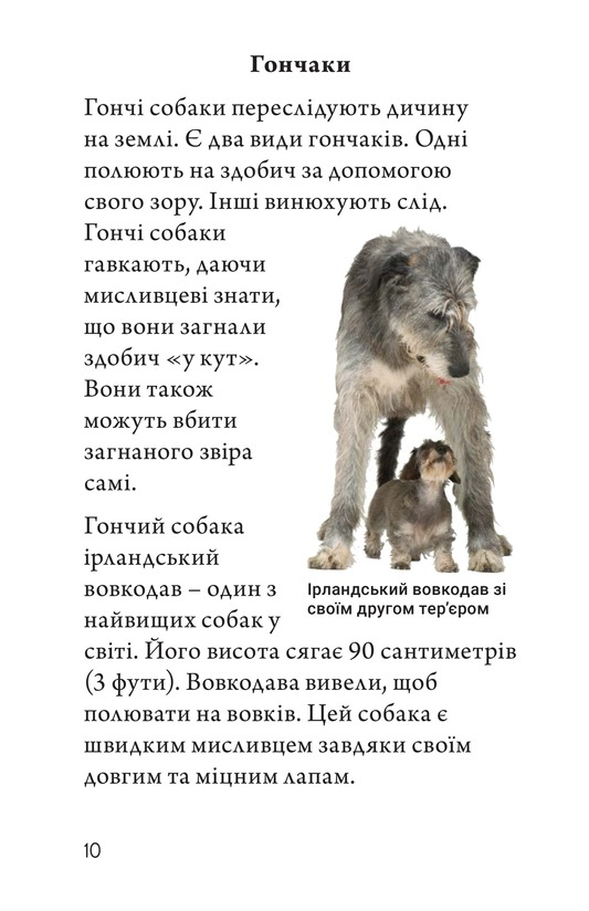 Book Preview For Breeds of Dogs Page 10