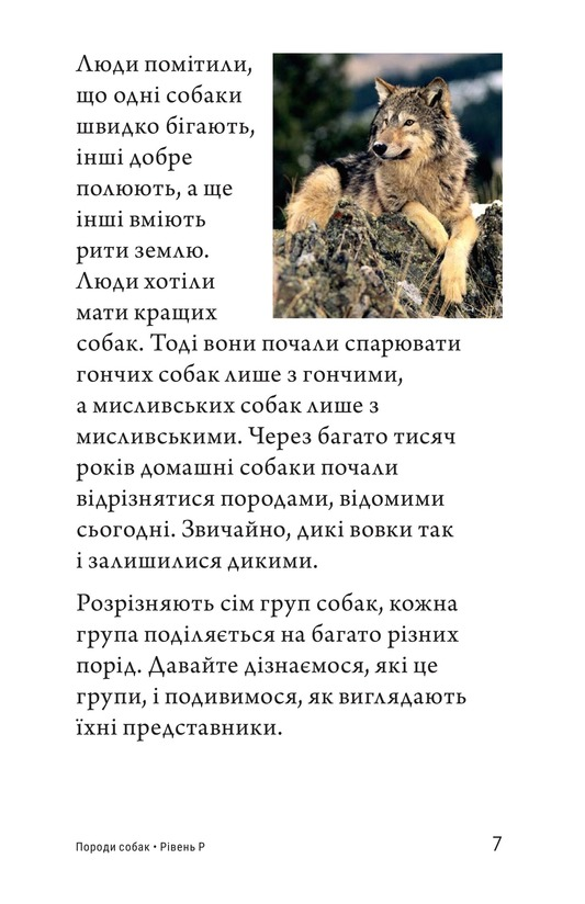 Book Preview For Breeds of Dogs Page 7