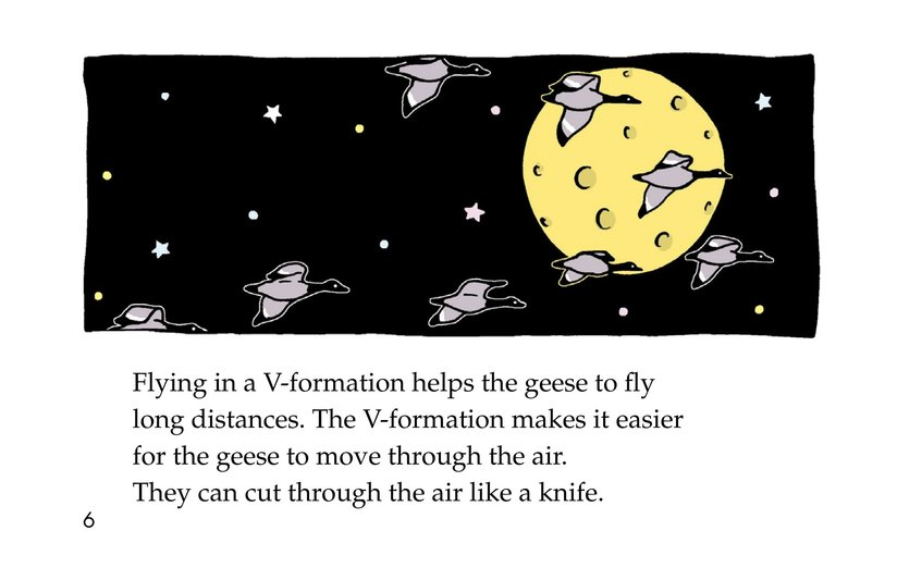Book Preview For Migrating Geese Page 6