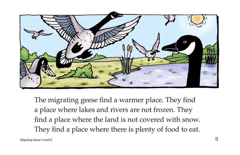 Book Preview For Migrating Geese Page 11