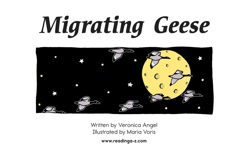 Book Preview For Migrating Geese Page 2
