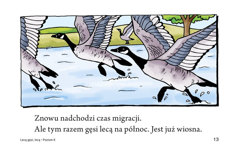 Book Preview For Migrating Geese Page 13