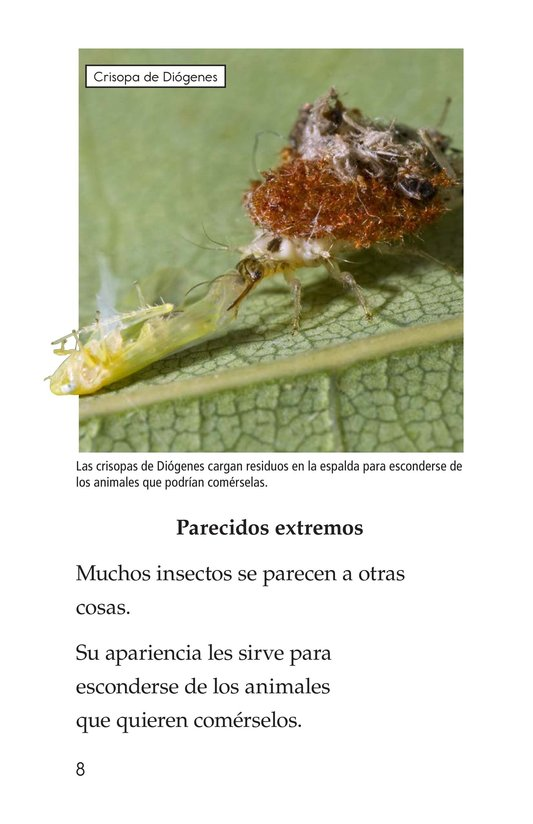 Book Preview For Extreme Insects Page 8