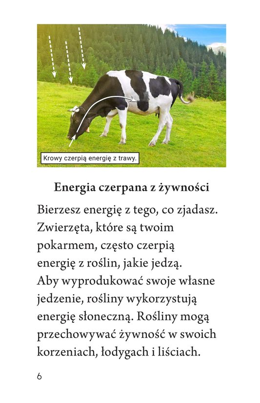 Book Preview For Where We Get Energy Page 6