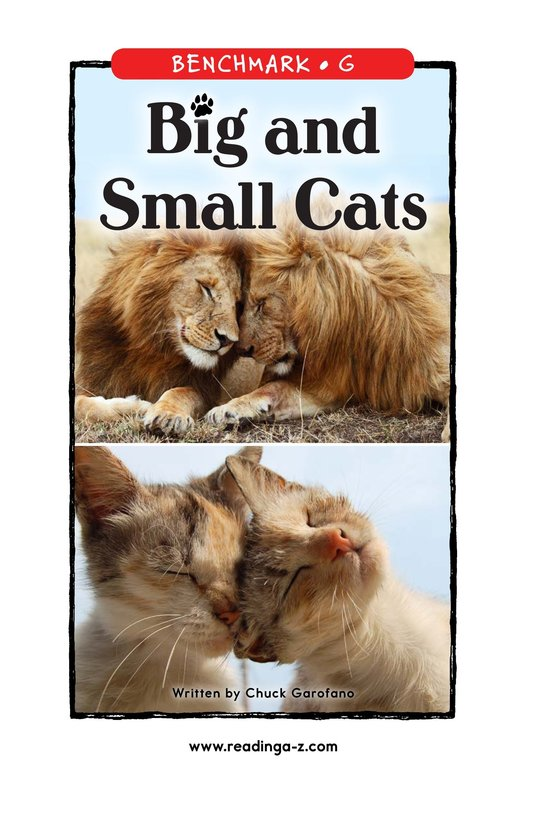Book Preview For Big and Small Cats Page 1